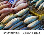 Many Type Colorful Of Seafood...