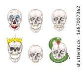 the human skull set isolated on ... | Shutterstock .eps vector #1687007362