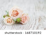 Stock photo pink roses on old white wooden background 168710192