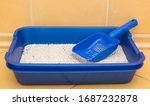 Blue Cat Tray. Fresh Cat Litter.