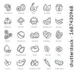Super Food Icons. Berries Nuts...