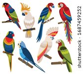 exotic parrots set including... | Shutterstock .eps vector #1687459252