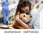 therapy dog visiting young... | Shutterstock . vector #168763262