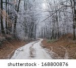 winter path | Shutterstock . vector #168800876