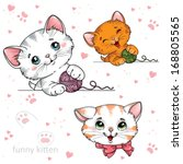 funny cartoon kitten on a white ... | Shutterstock . vector #168805565