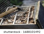 Insect hotel or house made of...