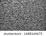 grunge texture of the water... | Shutterstock .eps vector #1688164675