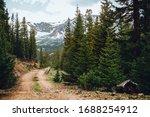 Mountain Trail For Four...
