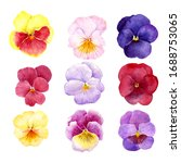 pansy flowers drawing by... | Shutterstock . vector #1688753065