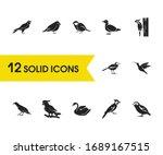 Fauna Icons Set With Tit Bird ...