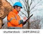 Forestry technician writing notes on clipboard notepad paper in forest during logging deforestation process - stock photo