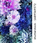 Small photo of Beautiful fresh colorful blue, white and purple dahlia flowers in full bloom. Spring blossoms. Flowery summer texture for background. Saturated blue color.