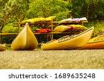 kayaks on water shore. rental... | Shutterstock . vector #1689635248