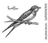 sketch of swallow bird or... | Shutterstock .eps vector #1690056505