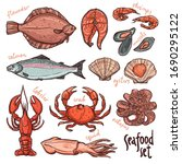 seafood collection  hand drawn... | Shutterstock . vector #1690295122