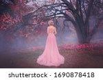 Mysterious silhouette princess. ...