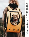 Small photo of The cat travels in a backpack (carry) on the back of the owner on vacation. Cat in a backpack. Cat Porthole Backpack. Cat in the backpack with porthole.