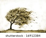 tree in stormy autumn 3 | Shutterstock . vector #16912384
