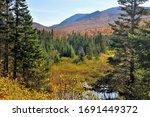 Rosebrook Mountain  Colorful...
