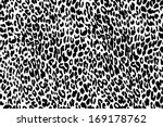 vector black and white background of leopard skin pattern - stock vector