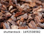 The Texture Of The Pine Bark O...