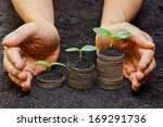 hands holding trees growing on...   Shutterstock . vector #169291736