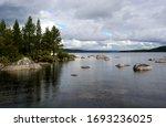 Scandinavian Nature. Forest...