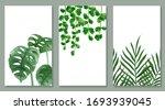 set of botanic and wild leaves... | Shutterstock .eps vector #1693939045