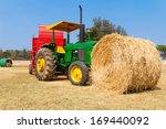 Brown Straw On Green Grass
