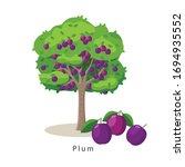 plum tree vector illustration...   Shutterstock .eps vector #1694935552