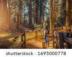 Caucasian Tourist with Backpack Exploring Sierra Nevada Ancient Forest. Travel to California, USA. - stock photo