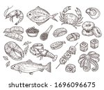 hand drawn seafood. natural... | Shutterstock .eps vector #1696096675