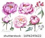 Watercolor Illustration....