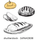 bread. vector hand drawn... | Shutterstock . vector #169642838