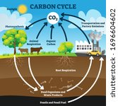 Carbon Cycle Vector...
