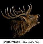 deer. realistic  artistic ...   Shutterstock .eps vector #1696609768