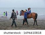 Horse Riding Tour At The Teluk...