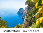 Welcome To Capri Cpncept Image...