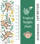vector cute height chart with...   Shutterstock .eps vector #1697897335