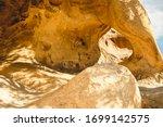 Petroglyphs On Rocks In Joshua...