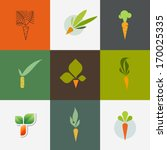 carrot. set of decorative... | Shutterstock .eps vector #170025335
