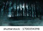 Dark Gloomy Forest. Night In...
