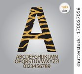 tiger skin alphabet and digit... | Shutterstock .eps vector #170037056