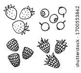 Hand Drawn Berries....