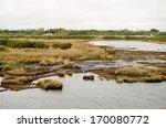 View Of The Salt Marsh Beside...