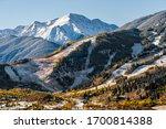 Aspen  Colorado Buttermilk Or...
