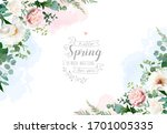 silver sage green and blush... | Shutterstock .eps vector #1701005335