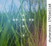 sacred geometry inspired vector ... | Shutterstock .eps vector #1701661168