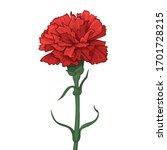 red carnation flower. happy...   Shutterstock .eps vector #1701728215