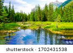Mountain forest pond nature...